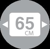 Modulo 65
